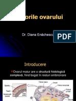 Curs 8 Tumorile Ovariene