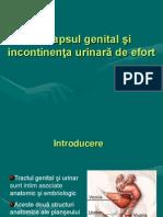 Curs 10 Prolaps Genital Si Incontinenta Urinara