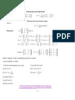 Resumen cálculo y propiedades de matrices inversas