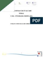 PPRROGRAMA ŞCOLARĂ CA INSTRUMENT AL REFORMEI CURRICULARE
