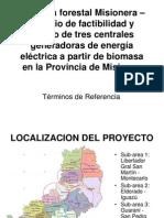Biomasa forestal Misionera ÔÇô Estudio de factibilidad y