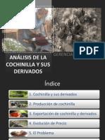 Analisis de La Cochinilla y Sus Derivados