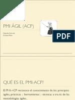 PMI agil