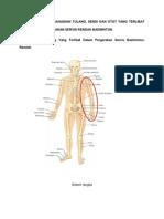36599641 Gambarjah Bahagian Tulang Sendi Dan Otot 1