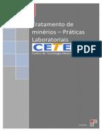 Tratamento de Minerios Praticas Laboratoriais