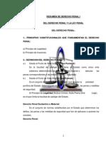 DERECHO PENAL Y PROCESAL PENAL.docx