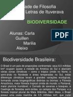 Bio Divers i Dade