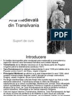 Arta Romanica Si Gotica in Transilvania