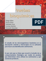 Pruebas Bioquimicas Editado Contabla