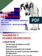 Abordaje Del Paciente Neuro