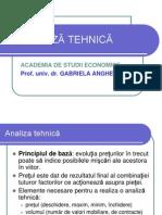 Analiza tehnica 2013