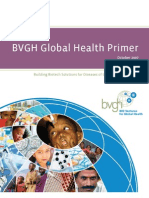 BVGH Global Health Primer 10Dec07
