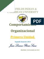 Primera Unidad Comportamiento Organizacional 2013