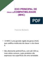 Complexo Principal de Histocompatibilidade (Mhc)