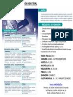 Estructura Acad Mica Rob Tica y Automatizaci n Industrial