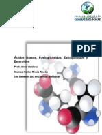 Ácidos grasos, fosfolipidos, esfingolipidos y esteroides