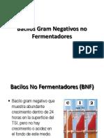 Bacilos Gram Negativos no Fermentadores.pdf