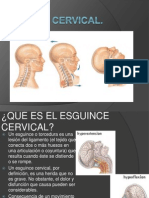 Paralisis Facial y Esguince cervical..pptx