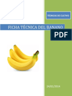 fICHa tecnica del platano.docx