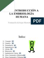 tema02_embriologiahumana.pps.pdf