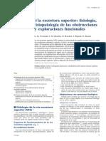 Via excretora superior - fisio, obstruccion, explocacion fx.pdf