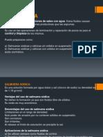 SALMUERAS.pptx