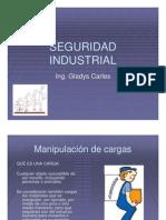 Manipulacion_de_Cargas.pdf