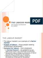 Demand for Labour Bized