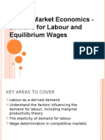 Demand for Labour and Equilibrium Wages
