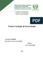 Metode de identificare a infecţiilor virotice la plante.doc