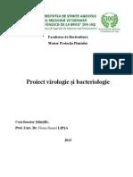 Metode de identificare a infecţiilor virotice
