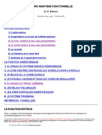 cortex_moteur.pdf