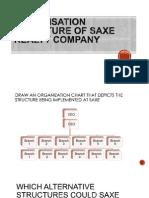 Organaization Structure SAXE