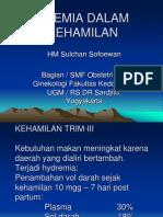ANEMIA DALAM KEHAMILAN 300309.ppt
