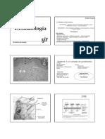 Dermatologia Aula 1.pdf