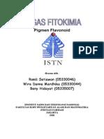 TUGAS FITOKIMIA.doc