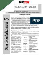 fatiga visual.pdf