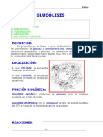 01-GLUCÓLISIS.doc