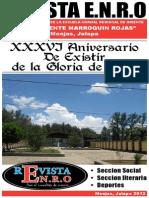 Revista ENRO.pdf