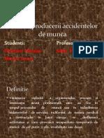 Cauzele producerii accidentelor de munca2.ppt