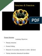 Rea Lec 5 Proteins I FP