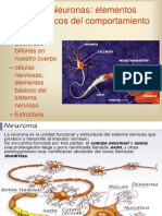 Neuronaselementosdelcomportamiento.ppt