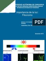 04 - Fitrocromo Andres Mtz.ppt