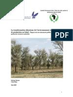 Rapport_stynthèse_Etude_Sahel versionmai25mai.pdf