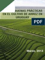 ARROZ GUIA_DE_BUENAS_PRACTICAS_marzo_2013.pdf