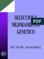 seleccionymejoramientogenetico-111116155738-phpapp01.pdf