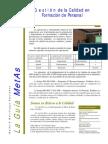La-Guia-MetAs-05-05-capacitacion.pdf
