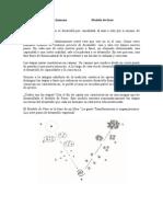 Etapas de la evolución humana Modelo de fases.doc