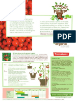 Tomatoes - Organic Growing Guides for Teachers + Students + Schools