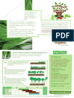 Pak Choi - Organic Growing Guides for Teachers + Students + Schools